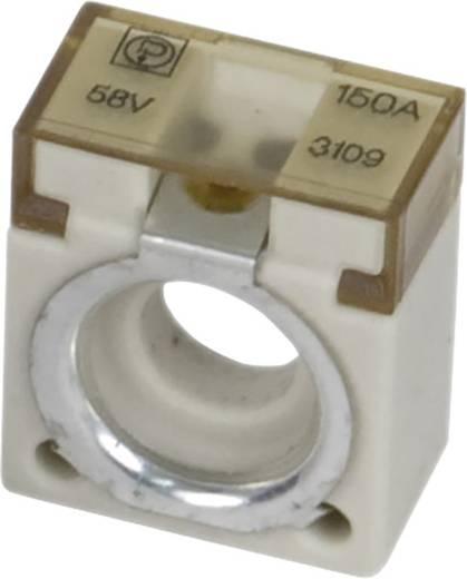 polsicherung-pudenz-cf-8-50a-15508925501.jpg