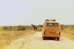 Kenia-Tanzania-60.jpg