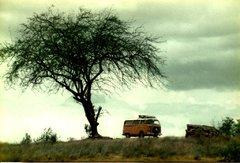 Kenia-Tanzania-67.jpg
