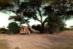 Kenia-Tanzania-70.jpg