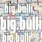 big.bulli